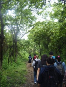 Over the river and through the woods on Tung Ping Chau we go...