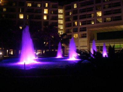 A picture of the hotel fountains at night. So pretty and the colors changed over time.