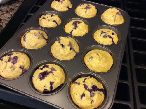 high protein blueberry muffins in tin